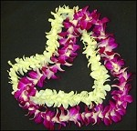Orchid Lei, Single - Fresh Flowers